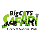 Corbett jeep safari booking, Corbett online jeep safari booking