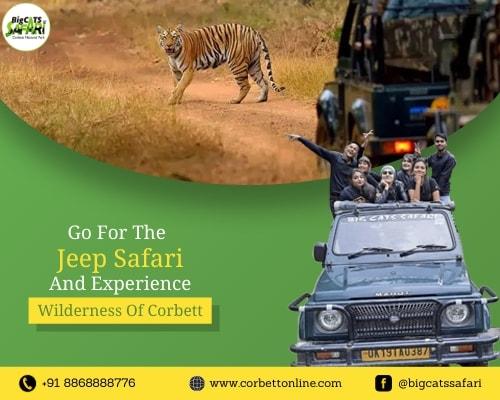 Jim Corbett Jeep Safari