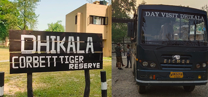 Dhikala Canter Safari Jim Corbett