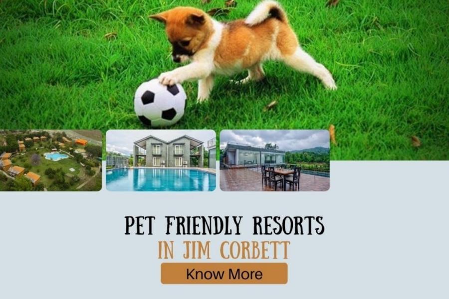 jim corbett pet friendly resorts