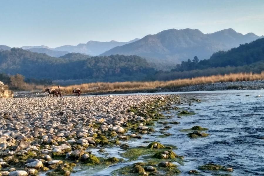 best resorts in jim corbett near river