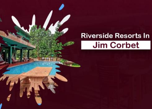 Riverside Resorts in Jim Corbett National Park