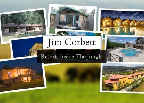 Jim Corbett Resorts Inside Jungle