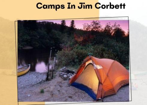 Camps In Jim Corbett