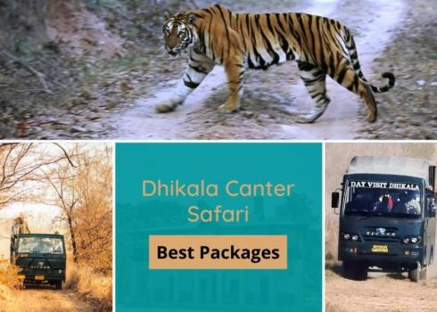 Dhikala Canter Safari Package