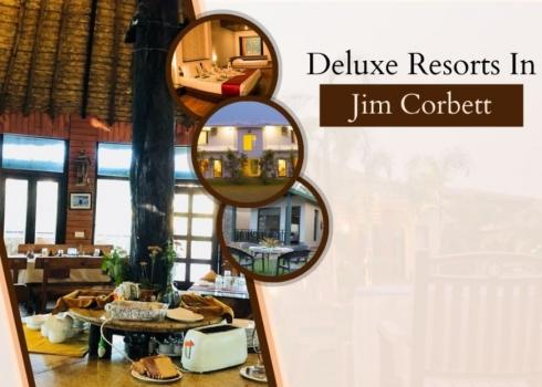 Deluxe Resorts in Jim Corbett