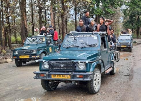 Tiger Sightseen During Lockdown Sitabani Road