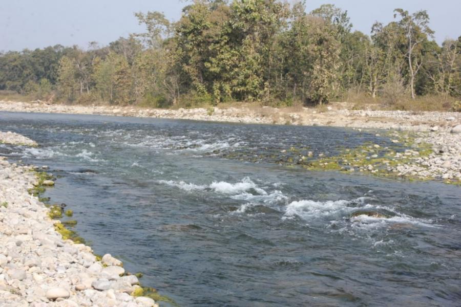Bijrani Camp River View